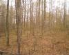 Sam Lane, Lakewood, Wisconsin 54138, ,Lot,Lots For Sale,Sam Lane,1029